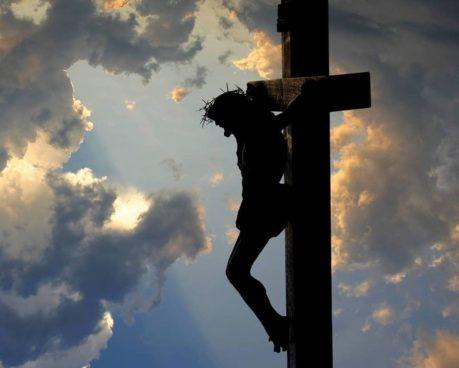 In observance of the Lenten Season, we shall resume regular working hours on Mon...